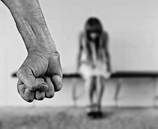 Domácí násilí